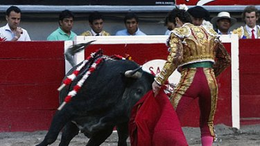 The moment the bull struck Tomas.