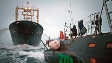 Thar she goes ... a Sea Shepherd vessel harasses the Nisshin Maru.