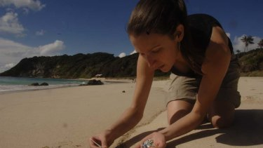 Problem ... Dr Jennifer Lavers collects plastic on Lord Howe Island.