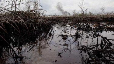 The oil-polluted waters of Bodo Creek in Nigeria.