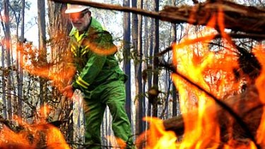 A firefighter works on the Bunyip State Park blaze.
