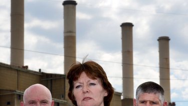 Former chief health officer Rosemary Lester was criticised in the report for her handling of the investigation into the mine fire.