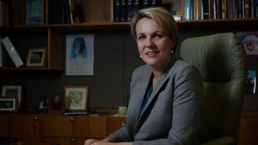 More choice: Health Minister Tanya Plibersek said subsidised abortion drugs would help women.