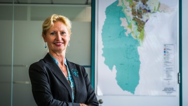 Dorte Ekelund is leaving as director-general of the Environment and Planning Directorate.