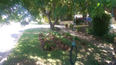 Bayswater councillor Chris Cornish has replanted a section of his verge in accordance with council policy.
