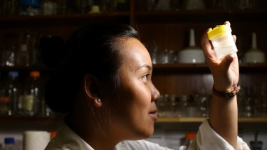 Vivian Sim, at the University of NSW studies microbeads found in Sydney Harbour.