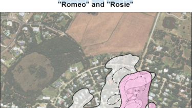 This aerial view shows the parts of Somers Rosie the female koala (pink) and Romeo the male koala (grey) call home. The dotted lines indicate their preferred areas.
