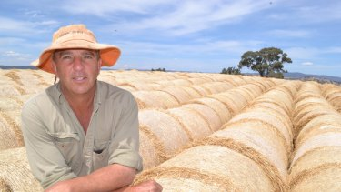 David Suttor and his 1000 bales of wheaten hay.