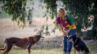 Trish Harris, a dog trainer says the trend for owners to treat their pets as surrogate children can be damaging.