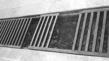 The open grate on the driveway of the Knickerbocker Hotel.