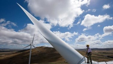 Precarious balance: cutting the renewable energy target will damage the industry, companies say.