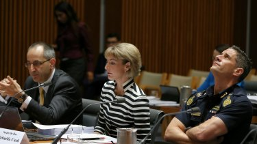 Australian Border Force Commissioner Roman Quaedvlieg during a hearing with the Legal and Constitutional Affairs committee at Parliament House in Canberra.
