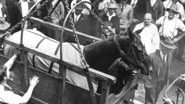 Longshot or a blank ... Phar Lap en route to the US from Australia in 1932. He was never to return, the great horse's death a lingering mystery.