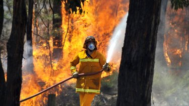 A firefighter tackles the raging blaze near the small Gippsland town of Boolarra yesterday. Up to 10 houses had been lost by  8pm.