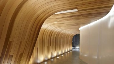 A cedar timber wall curves into the ceiling.