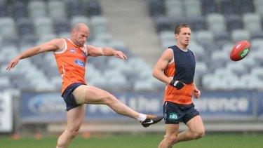 Raining Cats: Paul Chapman and Joel Selwood at training yesterday.