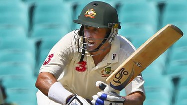 To the rescue . . . Mike Hussey scored his 11th Test century.
