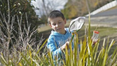 Rare cancer... Will Porter, 9, from Guyra.