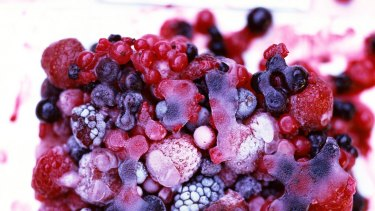 Patties Foods says its tests show no links between its berries and the hepatitis A outbreak.