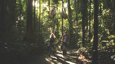 Scientists Cassandra Nichols and Lilita Simpson from James Cook University walk through the forest on their way to study the effects of climate change on the Daintree Rainforest at the Australian Canopy Crane Research Station on August 7, 2009 in Cape Tribulation.