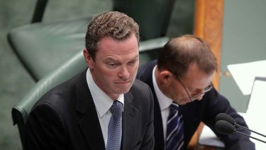 Calling someone a climate change denier is akin to calling them a Holocaust denier,  according to Christopher Pyne.