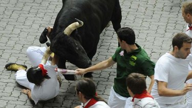 Close call ... a bull nearly gores a man.