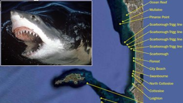 Satellites set to track Great White sharks off WA coast.