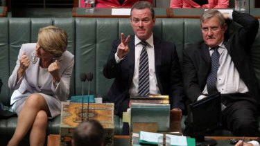 Leader of the House Christopher Pyne reacts to a point of order during question time on Thursday. Photo: Alex Ellinghausen