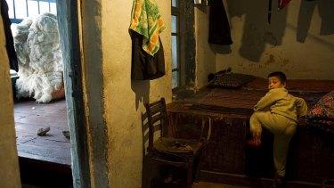 Source of criticism: cotton in an Uzbek house.