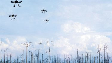 At the moment, the planet loses about six billion trees each year. Seed-planting drones may represent the most futuristic way to re-establish tree cover on a large scale.