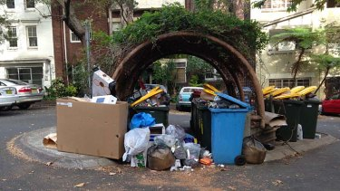 From this: The overflowing bins that now blight Darlinghurst's Royston Street and are a magnet for illegal dumpers and vermin.