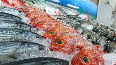 """Sydney Fish Market general manager Bryan Skepper said the multimillion-dollar overhaul would create """"the world's best fish market"""", and potentially double visitor numbers to 6 million a year."""