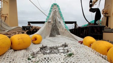 The super trawler, the Abel Tasman, docked at Port Lincoln, South Australia last month.