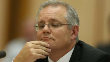 Scott Morrison minister for Immigration and Border Protection. Photo: Andrew Meares