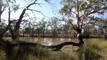 A question of volume... the Murray Darling basin.