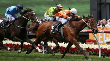Pure gold: Blake Shinn rides Who Shot Thebarman to victory in the Moonee Valley Gold Cup.