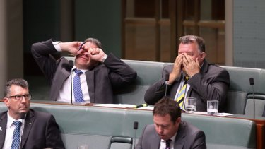 Government MPs Dennis Jensen and Craig Kelly in Parliament in 2014.