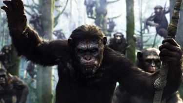 A scene from <i>Dawn of the Planet of the Apes</i>.
