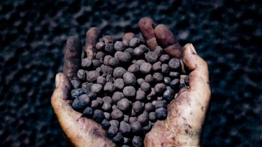 The project in Brazil would not produce any iron ore.