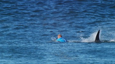 Close call: Mick Fanning is attacked by a shark.