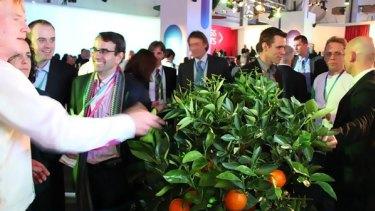 Ericsson's Twittering Tree.