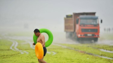 A man carries floats as he walks on an algae covered beach as a truck collecting algae passes by, along the coastline in Qingdao, Shandong province.