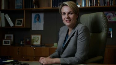 Health Minister Tanya Plibersek has announced extra funding for research into primary care including a partnership with Canada.
