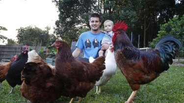 Roger and out ... Patrick Chong with his son Noah, Roger the rooster, and his hens at his property in Wimbledon Grove. Lake Macquarie City Council has told Mr Chong to get rid of Roger after pressure from a neighbour.