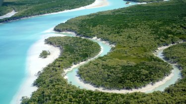 Mangroves and tidal creeks of Roebuck Bay, near Broome, WA.