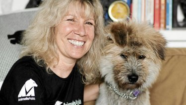 Rescue me … Jill Robinson, founder and CEO of Animals Asia Foundation, with a rescued dog.