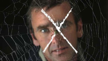 Invertebrate expert Patrick Honan, with a St Andrew's cross spider, will host a seminar to help people caught in a web of fear.
