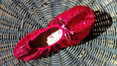 The ballet shoe thrown towards outspoken anti-abortion advocate David Bereit.