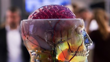 Visitors walk behind an anatomical 3d object of a human skull at the stand of US company Stratasys during the international fairs FabCon 3.D
