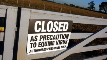 Bolted: Money invested to fight an equine influenza court case is subject to a major probe.